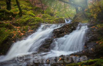 Waterfall in autumn coloured Scottish woodland.