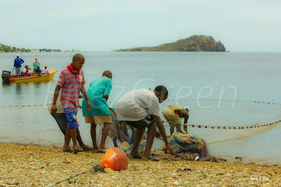Dominica traditional net fishing