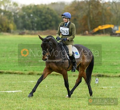 Sarah Wales and TRENEMAN - Oasby (2) Horse Trials 2020