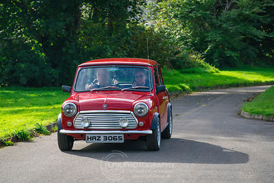 Little Red Mini