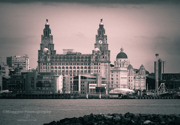 The Liver Birds Beckon