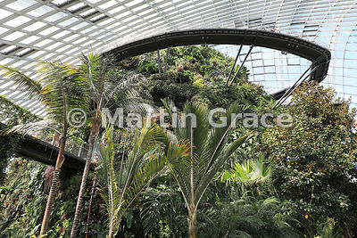 The Cloud Mountain, Cloud Forest, Gardens By The Bay, Singapore, Southeast Asia