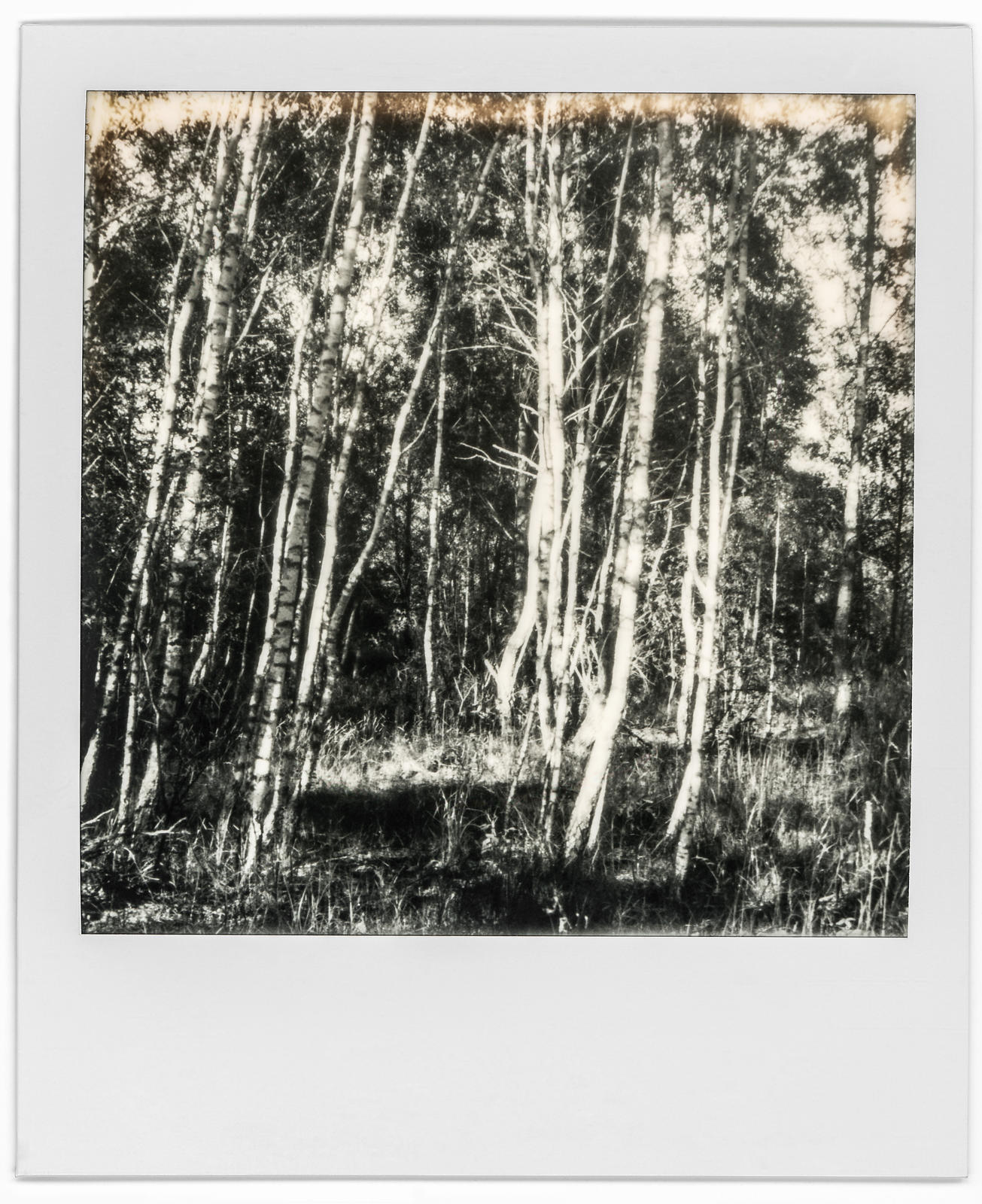 photo-polaroid-tchernobyl-chernobyl-35