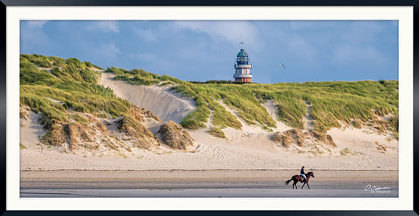 Horse Riding under lighthouse Le Touquet