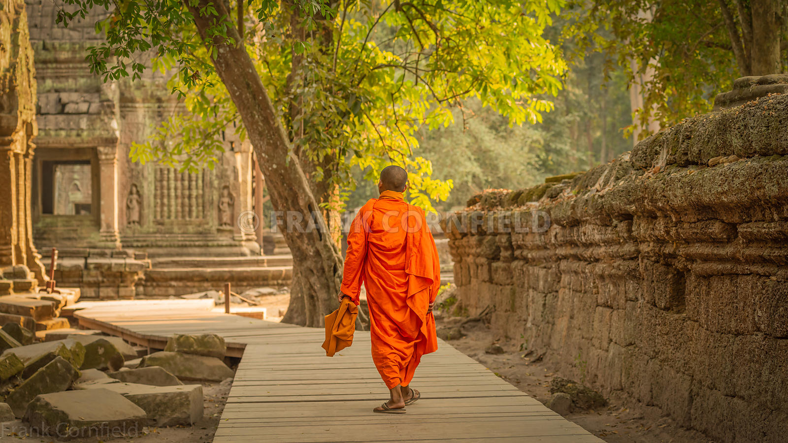 A lone monk walking through the Buddhist temple of Ta Prohm within the Angkor Wat complex in Cambodia.