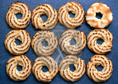 Rows of coconut biscuits on a blue background.