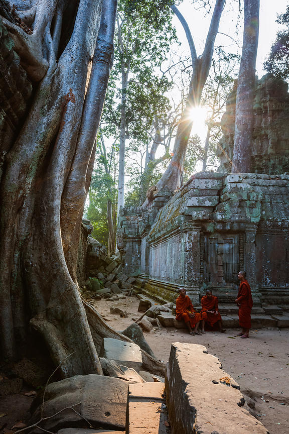 Monks at Ta Prohm