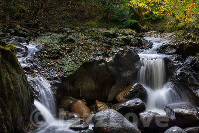 Waterfall in autumn coloured Scottish woodland