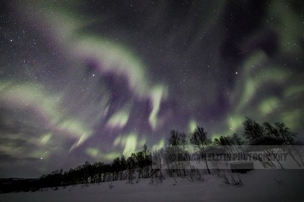Green and purple northern lights above cottage on the shore of the Teno River in Utsjoki, Lapland