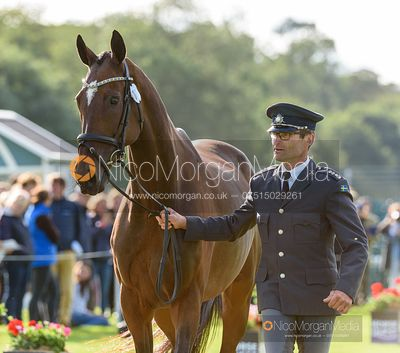 Johan Lundin and MIND ME at the trot up, Land Rover Burghley Horse Trials 2019