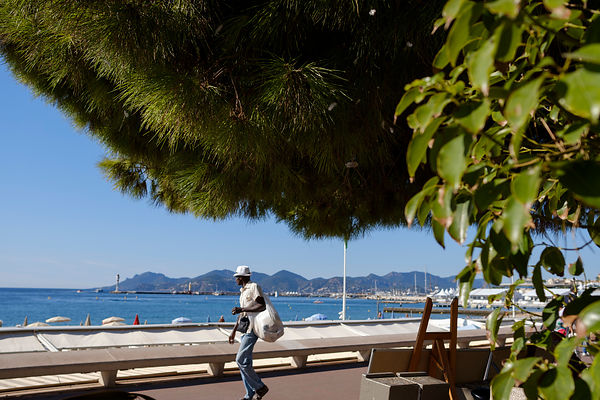 Cannes, Alpes Maritmes, France