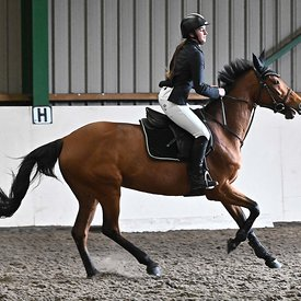 15/03/2020 - Class 7 - Unaffiliated showjumping - Brook Farm training centre - UK
