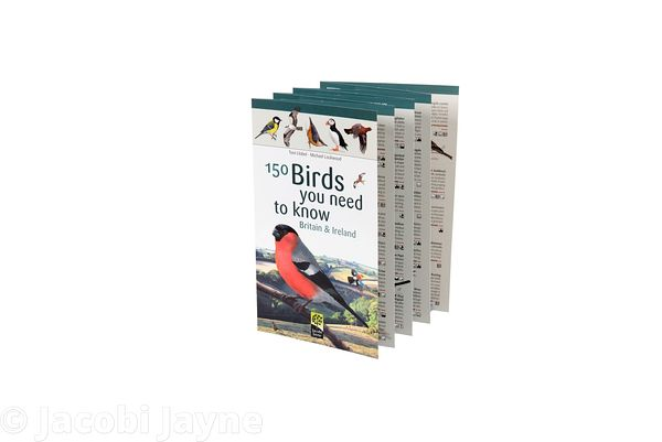 150 Birds You Need To Know