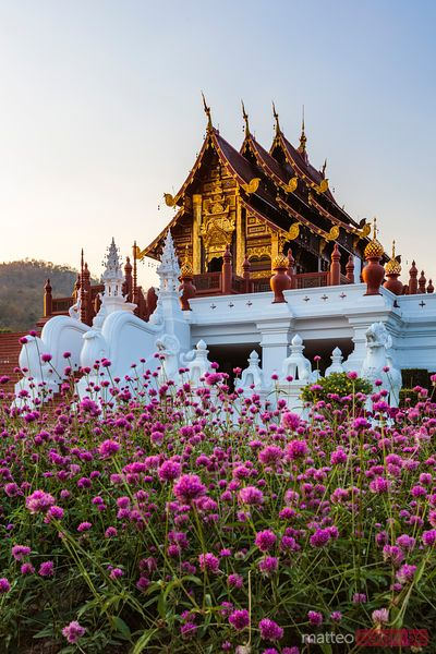 Royal pavilion at sunset, Royal park Rajapruek, Chiang Mai, Thailand