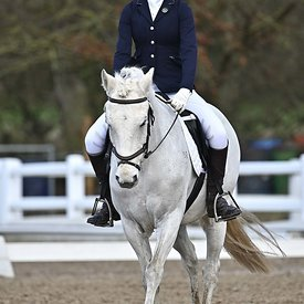 17/02/2020 - Class 4 - EHNPC dressage - Brook Farm training centre - UK