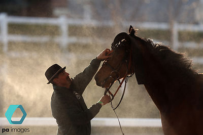 Horses are cooled down after the Pinsent Masons Handicap Hurdle during Grand National Day of the Randox Health Grand National...