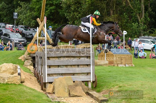 Nicky Hill and MGH BINGO BOY - Cross Country - Land Rover Burghley Horse Trials 2019