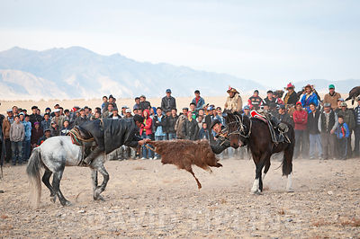 Buzkashi - Mongolian tug of war with a goat skin Bayan-Ugli at Eagle hunters festival, Altai Mountains, Western Mongolia