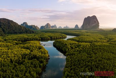 Aerial view of river through mangroves, Phang Nga bay, Thailand
