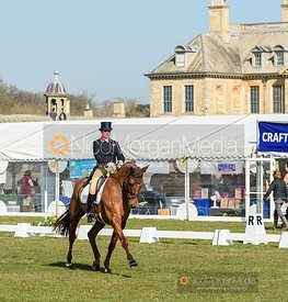 Piggy French and QUARRYCREST ECHO, Belton Horse Trials 2019