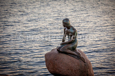 The Little Mermaid statue in Copenhagen at sunrise