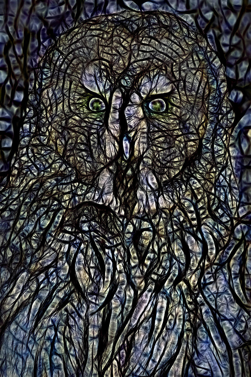 THE_Mystic_Owl_cover_collection
