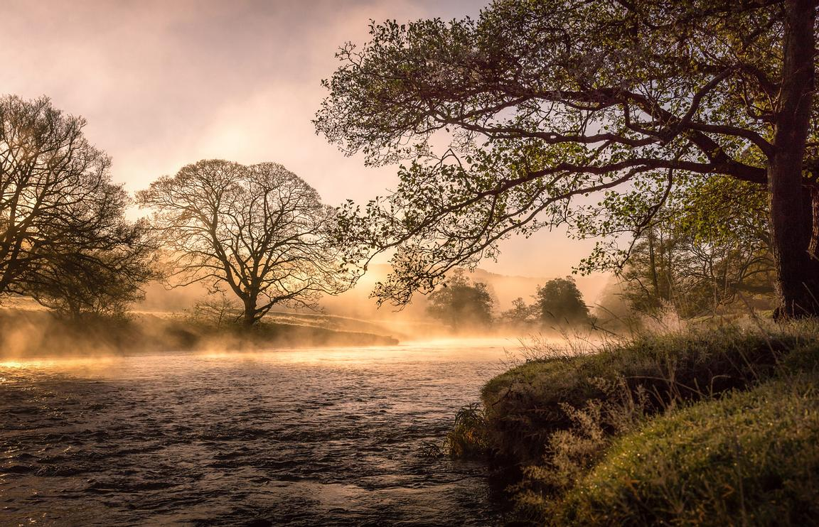 November morning by the Derwent at Chatsworth