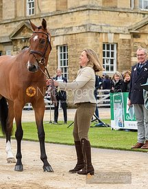 Pippa Funnell and LONDON 52 at the trot up, Equitrek Bramham Horse Trials 2019