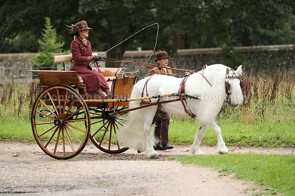 Carriages in the Park, Attelage Euston Hall Estate 29/8/2020