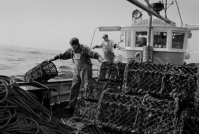 Fishermen aboard the Newlyn Crabber the 'William Harvey'.