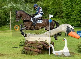 Laura Collett and DACAPO, Equitrek Bramham Horse Trials 2019