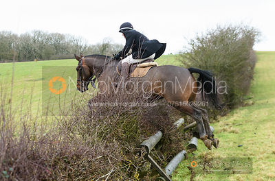 Jumping a fence. The Cottesmore and Fernie Hunts at Hill Top 10/12