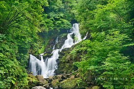 Waterfall in forest - Europe, Ireland, Kerry, Killarney, Torc Waterfall (Killarney National Park) - digital
