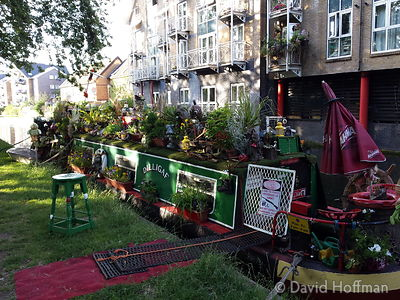 2015-06-25 19.07.32 Flowers cover a barge on the Regents Canal, Hackney, London.