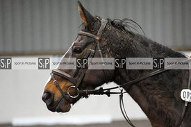 Stapleford Abbotts. United Kingdom. 13 December 2020. Unaffiliated showjumping. MANDATORY Credit Ellen Jameson/Sport in Pictu...
