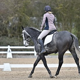 14/03/2020 - Class 5 - Unaffiliated dressage - Brook Farm training centre - UK