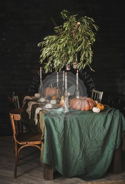Stylish Thanksgiving Day party table setting with olive tree branches