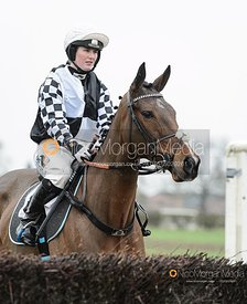 Gina Andrews and MAMMOTH - Race 6 - Open Maiden - The Midlands Area Club at Thorpe Lodge 26/1