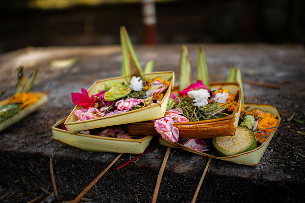 Daily cermonial offering of food and flowers. Ubud. Bali. Indonesia