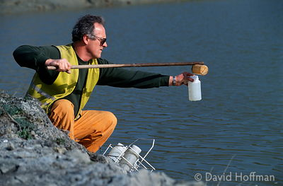 1.0614-786 Taking samples for analysis from lagoon of leachate draining from landfill site, Essex.