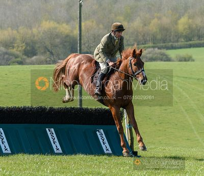 Jumping a fence at Stone Lodge Farm. Cottesmore Fun Ride, April 2019