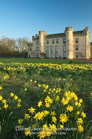 Image - House of the Binns, West Lothian, Scotland, Daffodils