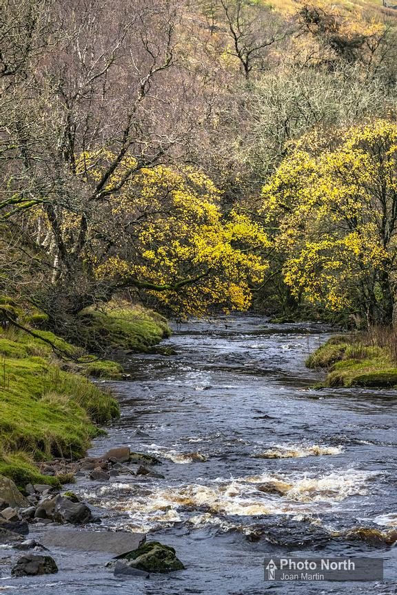 GARSDALE 02A - The River Clough