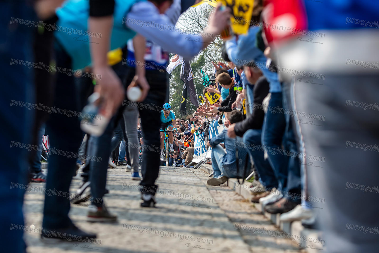 The Cyclist Magnus Cort Nielsen - Tour of Flanders 2019