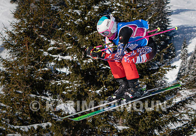 Freestyle_Skiing_Cross_-_Forest