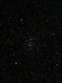 Open star cluster M44 constellation of Cancer