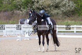 Dressage. BD. Brook Farm Training Centre. Stapleford Abbots. Essex. GBR. 05/{04/2019. ~ MANDATORY Credit Elli Birch/Sportinpi...
