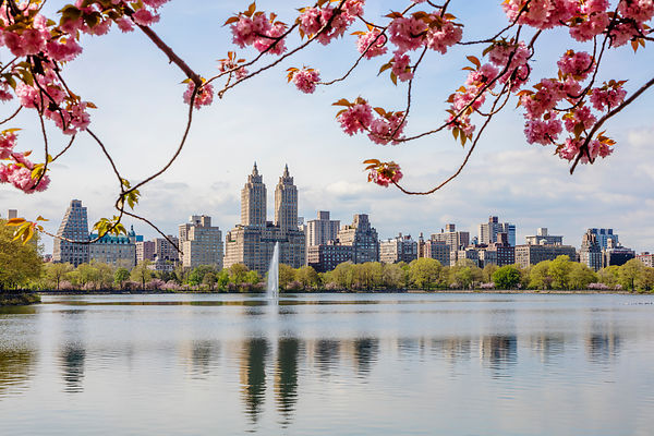 Springtime in New York