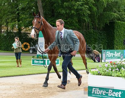 Wills Oakden and OUGHTERARD COOLEY at the trot up, Equitrek Bramham Horse Trials 2019