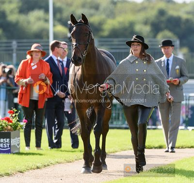 Hazel Towers and SIMPLY CLOVER at the trot up, Land Rover Burghley Horse Trials 2019
